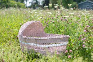 Lee más sobre el artículo ¿Madre primeriza? Cómo afrontar el embarazo
