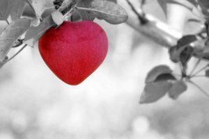 """Lee más sobre el artículo 5 frases en una relación que son más poderosas que decir """"te quiero"""""""