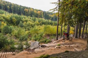 Lee más sobre el artículo Bicicletas de montaña: cómo elegir el modelo perfecto