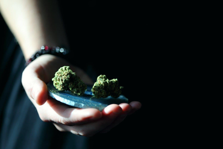 Las propiedades del cannabis con uso medicinal